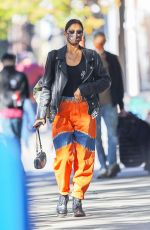 IRINA SHAYK Wearing a Mask Out in New York 10/18/2020