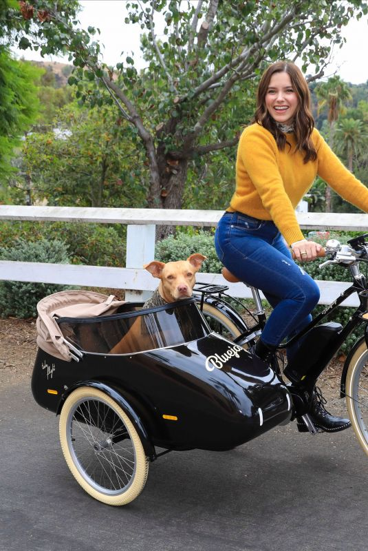 SOPHIA BUSH Out Driving Her Dog at a Bike in Los Angeles 10/27/2020