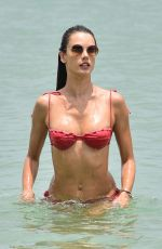 ALESSANDRA AMBROSIO in Bikini on the Beach in Florianopolis 11/17/2020