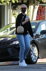 CAMERON DIAZ Out and About in Los Angeles 11/10/2020