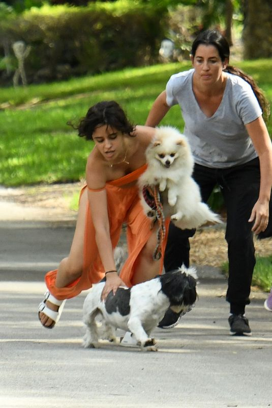 CAMILA CABELLO Out with Her Dogs in Miami 10/31/2020