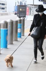 CATHERINE ZETA JONES Out with Her Dog in Los Angeles 11/20/2020