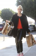 CHARLENE LAURENT Out for Thanksgiving Shopping in Hollywood 11/25/2020
