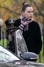 DAISY RIDLEY Out with Her Dog in London 11/17/2020