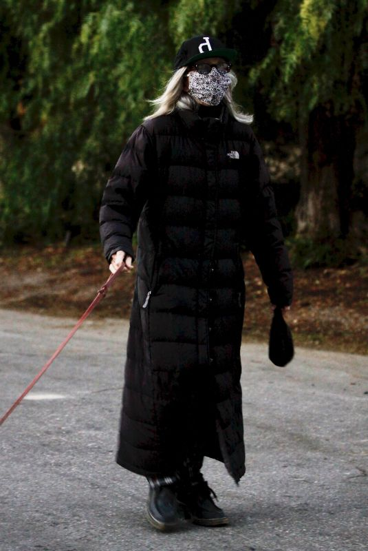 DIANE KEATON Out with Her Dog in Brentwood 11/20/2020