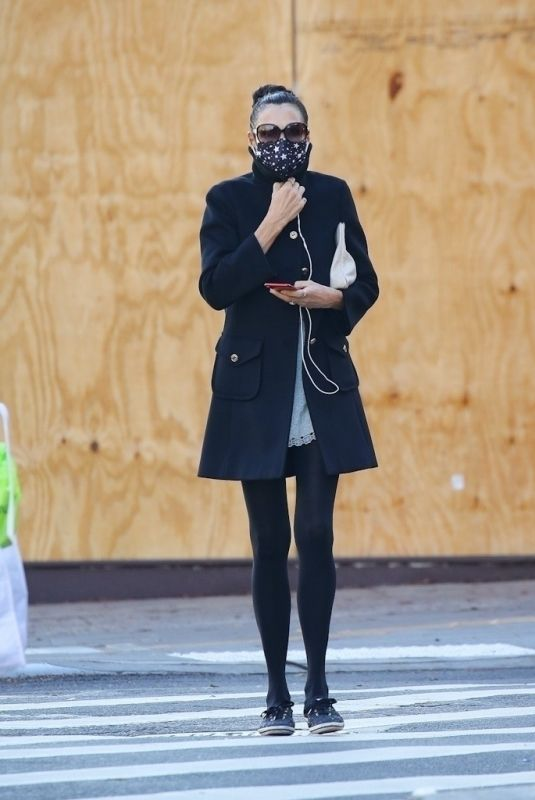 FAMKE JANSSEN Out and About in New York 11/16/2020