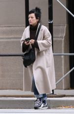 LILY ALLEN Out and About in New York 11/02/2020
