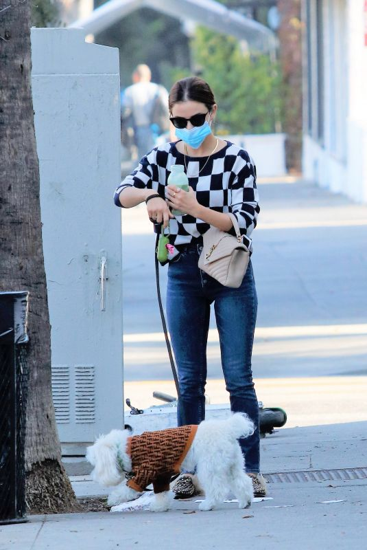 LUCY HALE Out with Her Dog in Los Angeles 11/12/2020