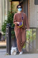 MARY ELIZABETH WINSTEAD Out with Her Dog in New York 11/16/2020