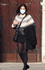 MELANIE SYKES Out in Venice 11/19/2020