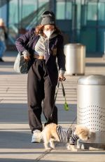 VANESSA HUDGENS with Her Dog at JFK Airport in New York 11/16/2020