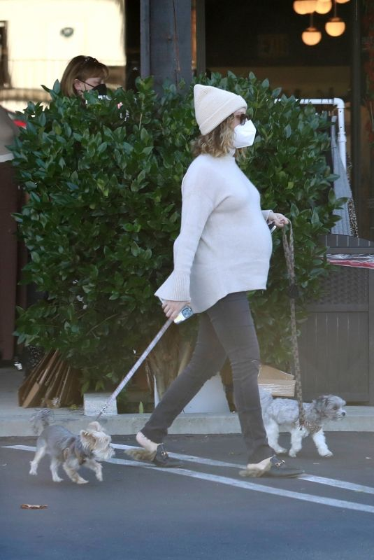 ASHLEY TISDALE Out with Her Dogs in Agoura Hills 12/29/2020