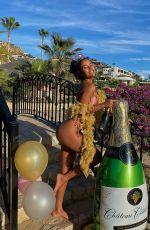 AVA DASH in Bikini - Instagram Photos 12/08/2020