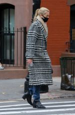 DAPHNE GROENEVELD Out for Lunch in New York 12/02/2020