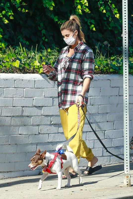 ELISABETTA CANALIS Out with Her Dogs in Beverly Hills 12/13/2020