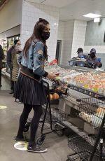 FAMKE JANSSEN Out Shopping in New York 12/24/2020