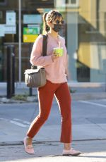 JORDANA BREWSTER Out in Los Angeles 11/28/2020