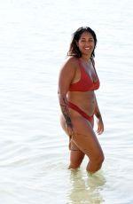 MALIN ANDERSSON in Bikini at a Beach in Dubai 12/15/2020