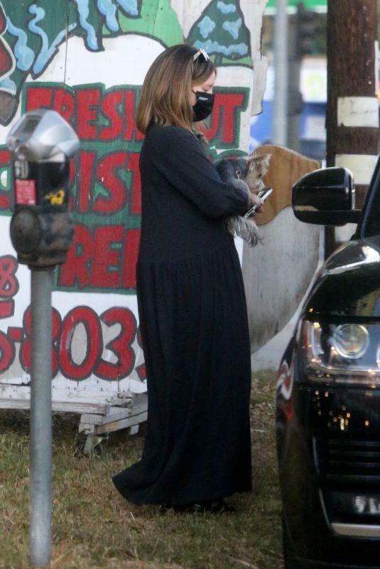 Pregnant ASHLEY TISDALE Shopping at a Christmas Tree Farm in Toluca Lake 12/01/2020
