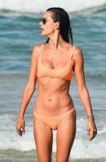 ALESSANDRA AMBROSIO in a Orange Bikini at a Beach in Brasil 01/09/2021