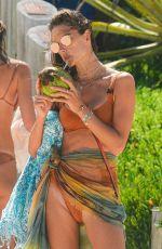 ALESSANDRA AMBROSIO in Bikini at a Beach in Florianopolis 01/22/2021