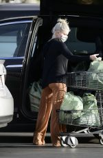 ARIEL WINTER Out Shopping for Groceries in Los Angeles 01/22/2021