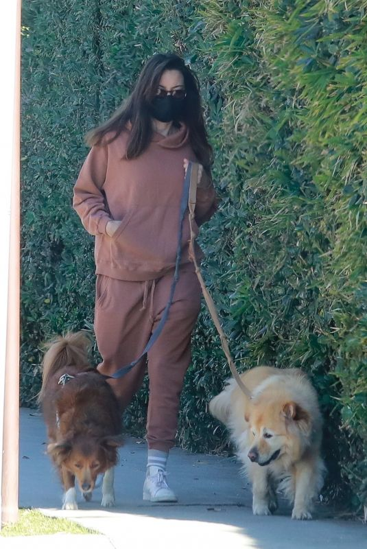 AUBREY PLAZA Out with Her Dogs in Los Angeles 12/30/2020