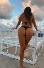 CLAUDIA ROMANI in Bikini in Miami Beach 01/21/2021