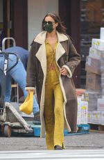 IRINA SHAYK Out and About in New York 01/22/2021