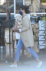 JORDANA BREWSTER in Ripped Denim Out in Brentwood 01/21/2021