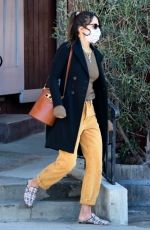JORDANA BREWSTER Out and About in Brentwood 01/26/2021