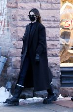 KENDALL JENNER Out in Aspen 12/31/2020