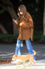 LILY COLLINS Out with Her Dog in Los Angeles 01/13/2021