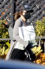 LISA RINNA Out and About in Bel Air 12/30/2020