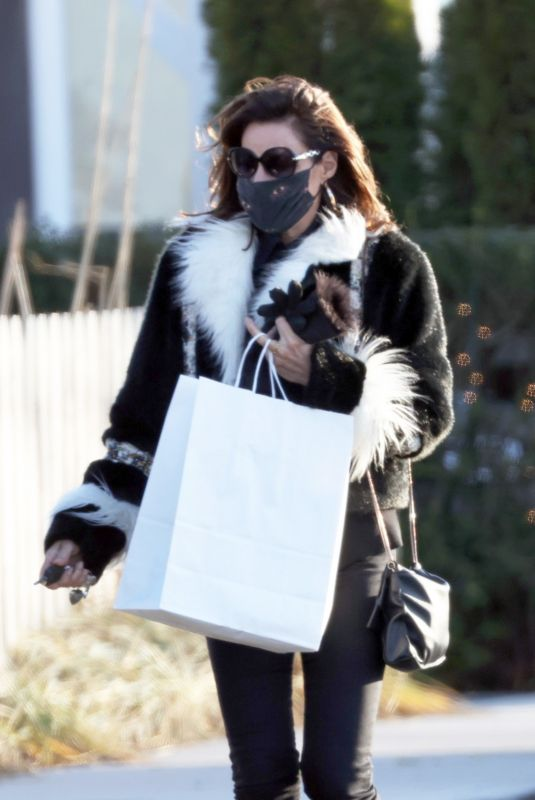 LUANN DE LESSEPS Out Shopping in New York 12/28/2020