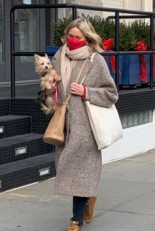 NAOMI WATTS Out with Her Dog in New York 01/22/2021