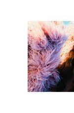 OLGA OBUMOVA for Kunst Magazine, January 2021