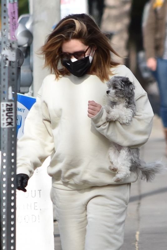 Pregnant ASHLEY TISDALE Out with Her Dog in Los Angeles 01/07/2021
