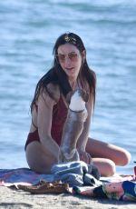 SCOUT WILLIS in Swimsuit at a Beach in Malibu 01/16/2021