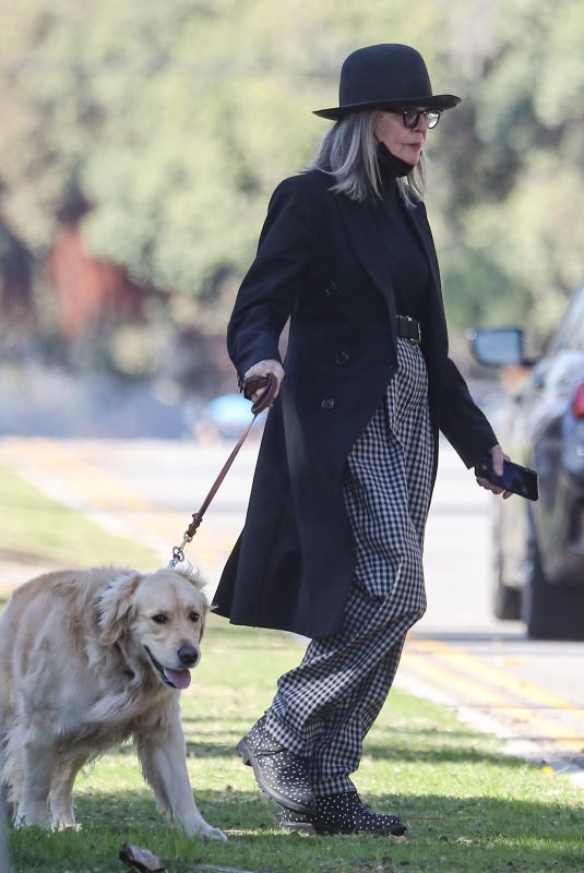 DIANE KEATON Out with Her Dog in Santa Monica 02/06/2021