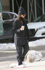 EMILY RATAJKOWSKI Out and About in New York 02/21/2021