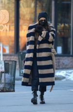 IRINA SHAYK Out and About in New York 02/08/2021