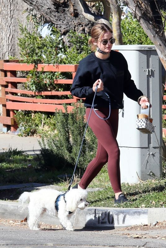 LUCY HALE Out with Her Dog in Los Angeles 02/18/2021