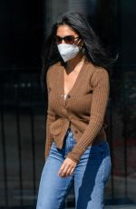 NICOLE SCHERZINGER and Tgom Evans Leaves Chin Chin in West Hollywood 02/19/2021