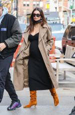 Pregnant EMILY RATAJKOWSKI Out with Her Dog in New York 02/26/2021