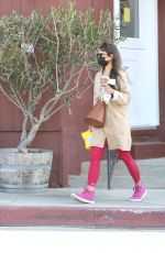 JORDANA BREWSTER at Brentwood Country Mart 03/24/2021