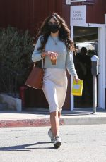JORDANA BREWSTER Out and About in Brentwood 03/01/2021