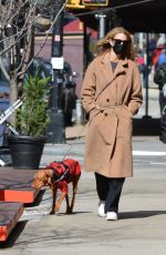 KATE BOCK Out with Her Dog Vestry in New York 03/15/2021
