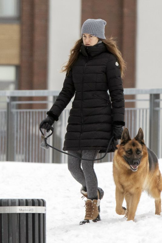 SHAILENE WOODLEY Out with Her Dog in Montreal 02/28/2021