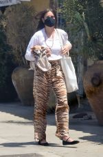SCOUT WILLIS Out with Her Dog in Los Angeles 05/22/2021